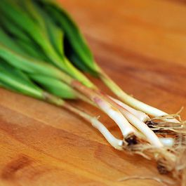 All About Ramps